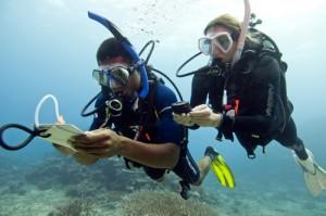 speciality scuba diver PADI Malaga