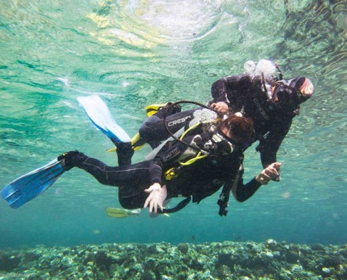 Dive beginner program