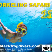 snorkeling safari in spain, torrox costa, nerja, torre del mar, algorobo, frigiliana