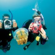 Scuba divers Malaga